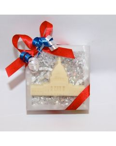 Capitol Building in Clear Lidded Box
