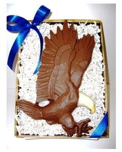 Chocolate Bald Eagle