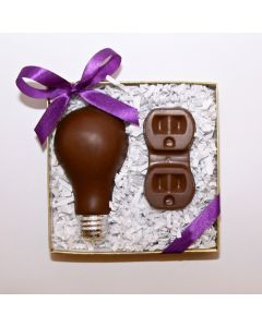 Light Bulb and Electrical Socket
